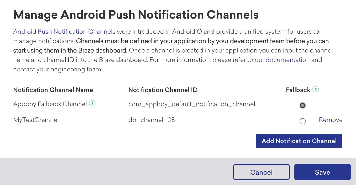 Braze Notification Channels